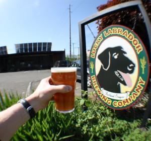 goat-rocks-maibock-beer-release